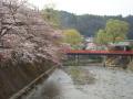 4.22中橋