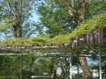 2011.5.19城山公園 (2).jpg