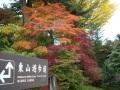 東山遊歩道