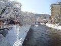 2012.03.13雪景色 (縮4).JPG