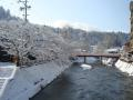 2012.03.13雪景色 (縮8).JPG