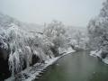 2012.04.04雪景色 (6).jpg