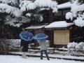 2012.04.04雪景色 (15).jpg