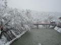 2012.04.04雪景色 (11).jpg
