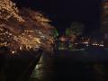 中橋のライトアップ 002.JPG