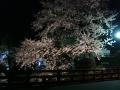 中橋のライトアップ 013.JPG