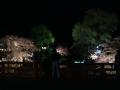 中橋のライトアップ 016.JPG
