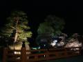 中橋のライトアップ 019.JPG