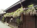春の風景 088.JPG