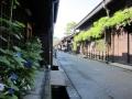 夏の古い町並み (1).JPG