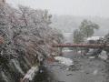 24冬景色 063.JPG