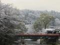 冬の中橋 001.JPG